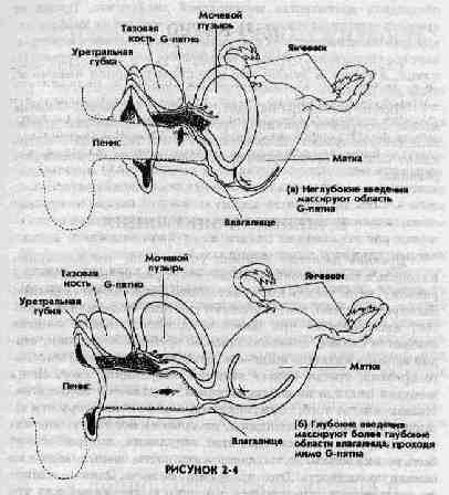 Усиленный оргазм у женщин
